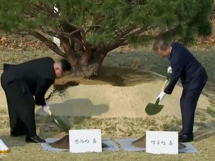 Le président sud-coréen Moon Jae-in et le dirigeant nord-coréen Kim Jong Un assistent à la cérémonie de plantation d'arbres