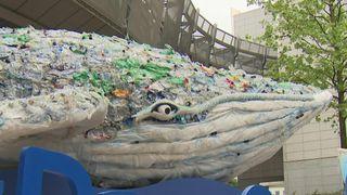 Plastic Whale visite Bruxelles
