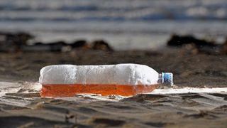 """Surfers Against Sewage fait campagne pour réduire les déchets plastiques sur nos plages """"srcset ="""" https://e3.365dm.com/18/01/320x180/plastic-beach-pollution_4213394.jpg?20180124134704 320w, https: //e3.365dm .com / 18/01 / 640x380 / plastique-plage-pollution_4213394.jpg? 20180124134704 640w, https://e3.365dm.com/18/01/736x414/plastic-beach-pollution_4213394.jpg?20180124134704 736w, https: / /e3.365dm.com/18/01/992x558/plastic-beach-pollution_4213394.jpg?20180124134704 992w, https://e3.365dm.com/18/01/1096x616/plastic-beach-pollution_4213394.jpg?20180124134704 1096w , https://e3.365dm.com/18/01/1600x900/plastic-beach-pollution_4213394.jpg?20180124134704 1600w, https://e3.365dm.com/18/01/1920x1080/plastic-beach-pollution_4213394. jpg? 20180124134704 1920w, https://e3.365dm.com/18/01/2048x1152/plastic-beach-pollution_4213394.jpg?20180124134704 2048w """"tailles ="""" (min-largeur: 900px) 992px, 100vw"""