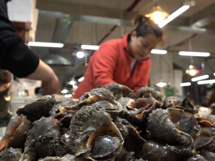 Le marché aux poissons de Dandong