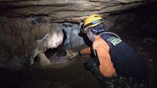 """Les équipes de secours luttent contre les hautes eaux pour trouver des garçons disparus dans la grotte thaïlandaise """"srcset ="""" https://e3.365dm.com/18/06/320x180/skynews-thai-cave_4346787.jpg?20180627090659 320w, https: //e3.365dm .com / 18/06 / 640x380 / skynews-thai-cave_4346787.jpg? 20180627090659 640w, https://e3.365dm.com/18/06/736x414/skynews-thai-cave_4346787.jpg?20180627090659 736w, https: / /e3.365dm.com/18/06/992x558/skynews-thai-cave_4346787.jpg?20180627090659 992w, https://e3.365dm.com/18/06/1096x616/skynews-thai-cave_4346787.jpg?20180627090659 1096w , https://e3.365dm.com/18/06/1600x900/skynews-thai-cave_4346787.jpg?20180627090659 1600w, https://e3.365dm.com/18/06/1920x1080/skynews-thai-cave_4346787. jpg? 20180627090659 1920w, https://e3.365dm.com/18/06/2048x1152/skynews-thai-cave_4346787.jpg?20180627090659 2048w """"tailles ="""" (min-largeur: 900px) 992px, 100vw"""
