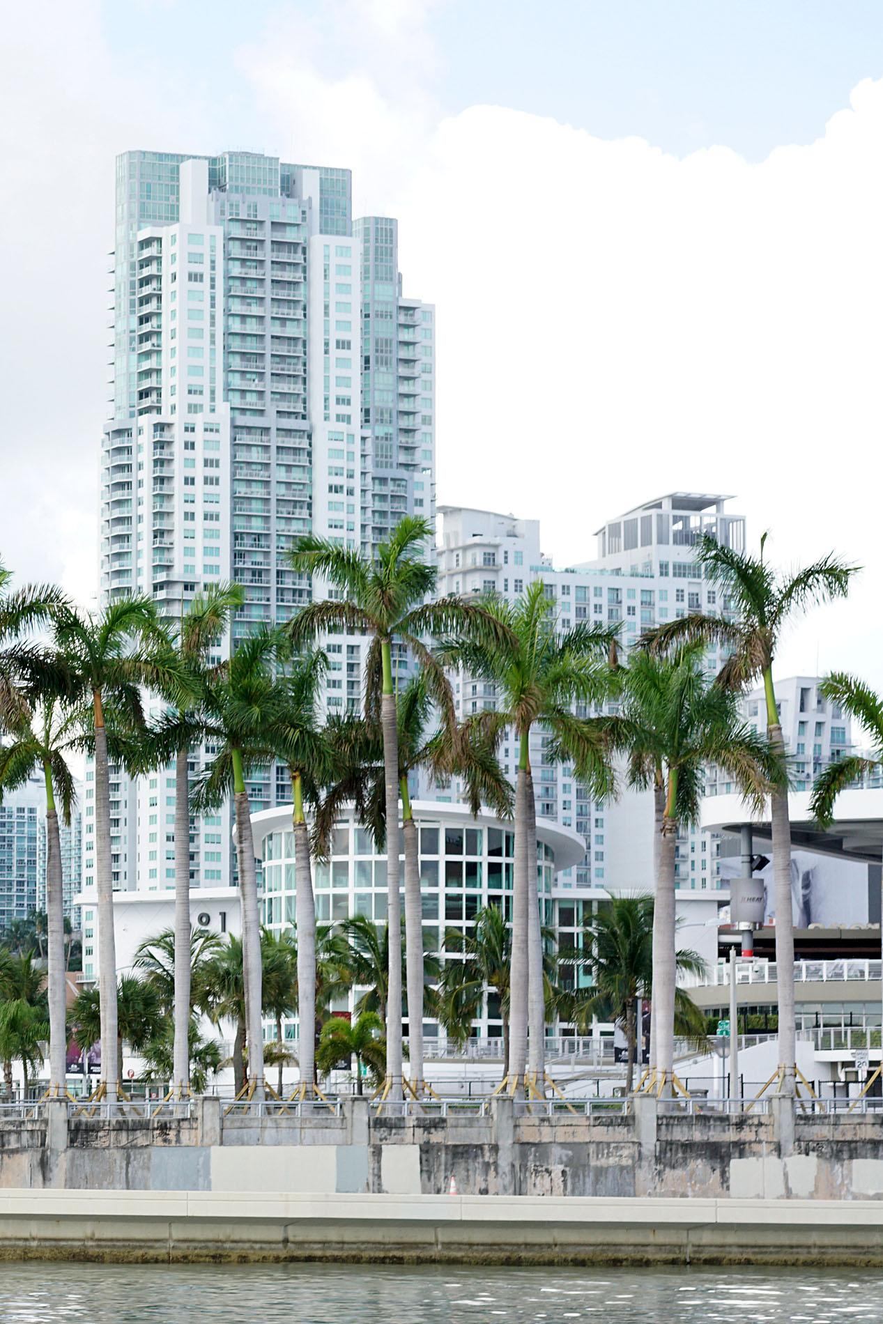 Miami Voyages