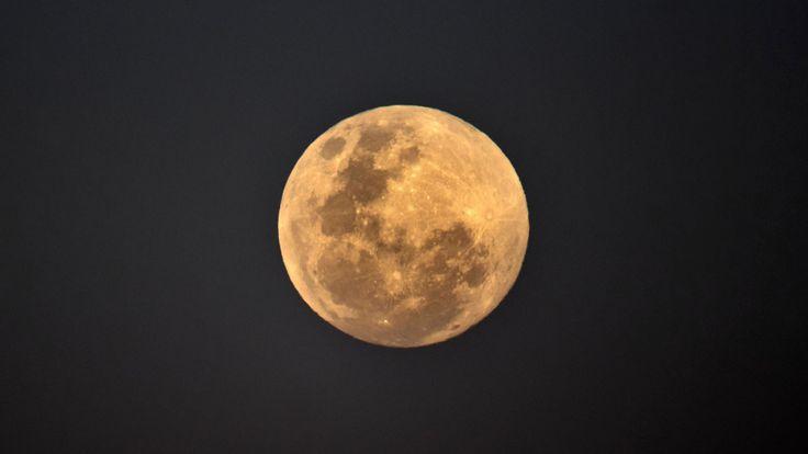 SYDNEY, NOUVELLE-GALLES DU SUD - 27 JUILLET: La pleine lune se lève près de Bondi Beach, Sydney, en Australie, avant une éclipse lunaire totale. La période de totalité pendant cette éclipse, lorsque l'ombre de la Terre est directement à travers la lune et qu'elle est la plus rouge, durera 1 heure, 42 minutes et 57 secondes, ce qui en fait la plus longue éclipse lunaire visible de ce siècle. 27 juillet 2018 à Sydney, Australie. (Photo par Brook Mitchell / Getty Images)