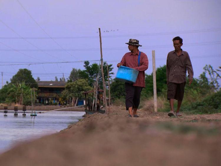 Prasit Choothip et Somnuak Jeenklab dirigent une ferme de crevettes à côté de l'usine illégale de Bangkok