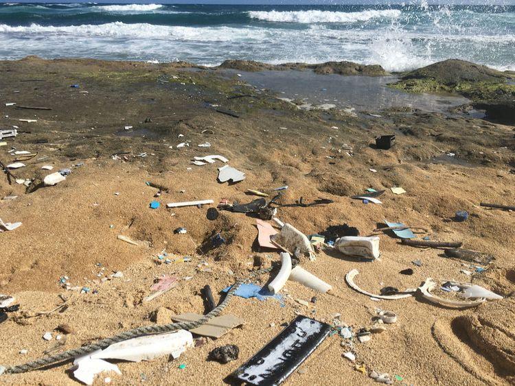 Plastiques échoués sur la rive à Hawaï