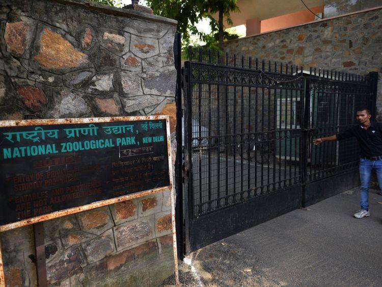 Les cages pour les humains seront installées au zoo de Delhi
