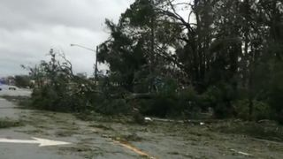 "Abandon des arbres et des lignes électriques après l'ouragan Michael en Floride ""srcset ="" https://e3.365dm.com/18/10/320x180/skynews-hurricane-michael-panama-city-beach_4449585.jpg?20181011072241 320w, https: //e3.365dm.com/18/10/640x380/skynews-hurricane-michael-panama-city-beach_4449585.jpg?20181011072241 640w, https://e3.365dm.com/18/10/736x414/skynews-hurric -michael-panama-city-beach_4449585.jpg? 20181011072241 736w, https://e3.365dm.com/18/10/992x558/skynews-hurricane-michael-panama-city-beach_4449585.jpg?s encore une fois /e3.365dm.com/18/10/1096x616/skynews-hurricane-michael-panama-city-beach_4449585.jpg?20181011072241 1096w, https://e3.365dm.com/18/10/1600x900/skynews-hurricane- michael-panama-city-beach_4449585.jpg? 20181011072241 1600w, https://e3.365dm.com/18/10/1920x1080/skynews-hurricane-michael-panama-city-beach_4449585.jpg?20181011072241, post-scriptum e3.365dm.com/18/10/2048x1152/skynews-hurricane-michael-panama-city-beach_4449585.jpg?20181011072241 2048w ""tailles ="" (mi largeur n: 900px) 992px, 100vw"