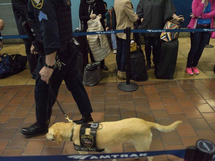 L'achat et la formation d'un chien renifleur de la police coûtent près de 10 000 dollars (7 790 £).