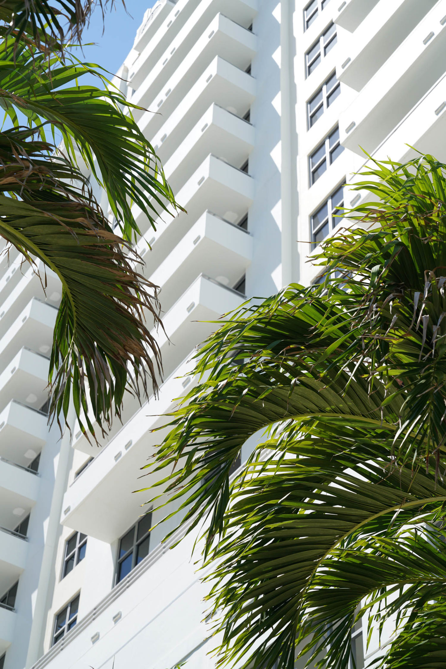 Loews Miami Beach Getaway