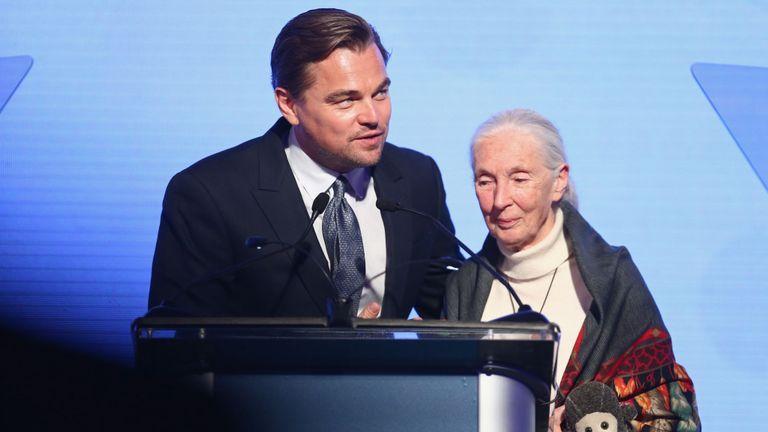 Leonardo DiCaprio et Jane Goodall