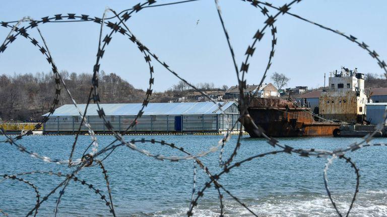 Près de 100 baleines sont retenues captives dans la région extrême orientale de Primorye en Russie