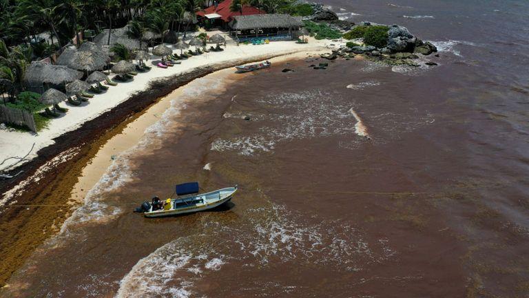 Les eaux proches de la station ont viré au brun