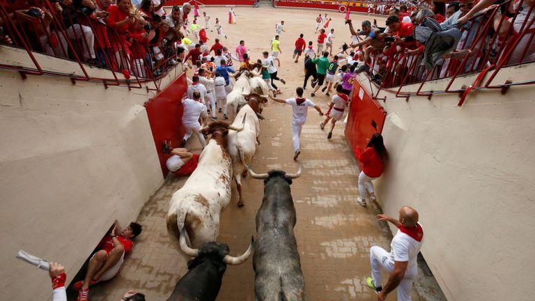 Les animaux sont tués dans l'arène après le festival chaque année