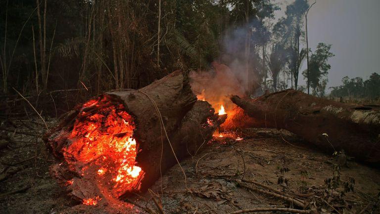 Vue du feu dans la forêt amazonienne, près d'Abuna, État de Rondonia, Brésil, le 24 août 2019