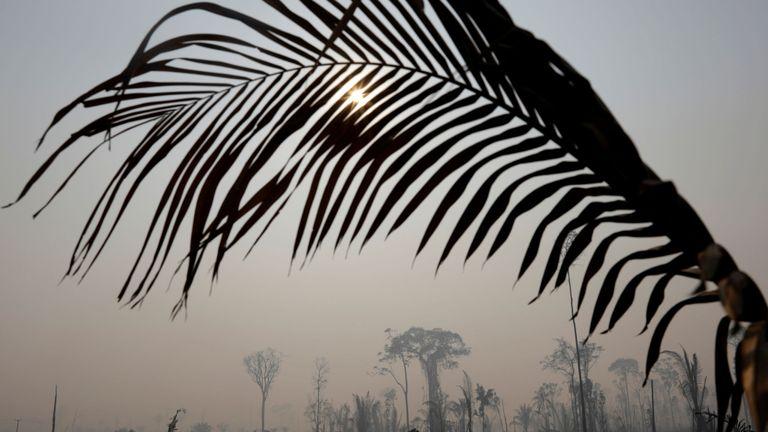 Partie brûlante de la jungle amazonienne à Porto Velho, Brésil, le 25 août 2019. REUTERS / Ricardo Moraes