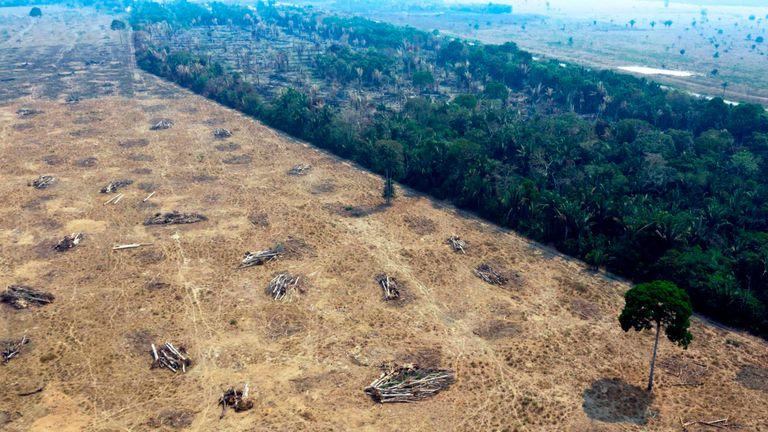 Vue aérienne des zones brûlées de la forêt amazonienne, près de Porto Velho, État de Rondonia, Brésil, le 24 août 2019