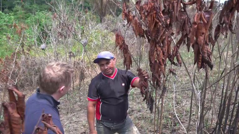Raimundo Nonato Apurina dit que les incendies vont les chasser de la terre