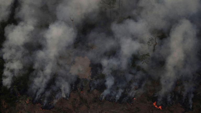 L'agence de surveillance officielle du Brésil a signalé une forte augmentation des incendies de forêt dans l'Amazonie cette année