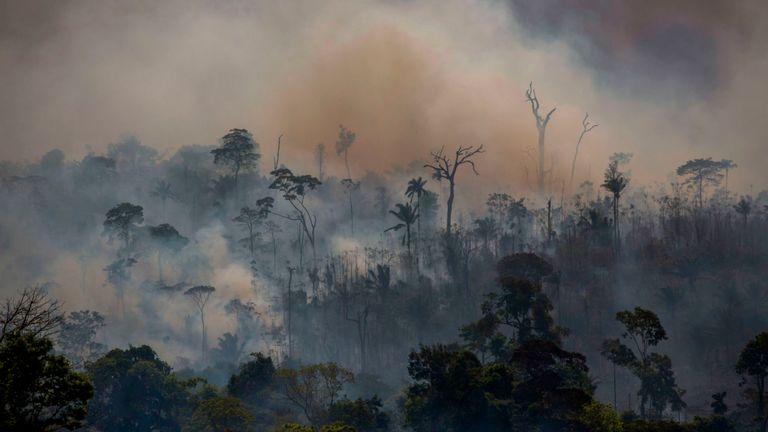 La fumée monte des incendies de forêt à Altamira dans l'État Para du Brésil