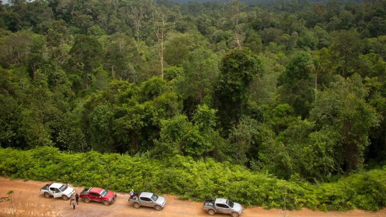 L'emplacement de Kalimantan Est était autrefois presque entièrement recouvert de forêts tropicales