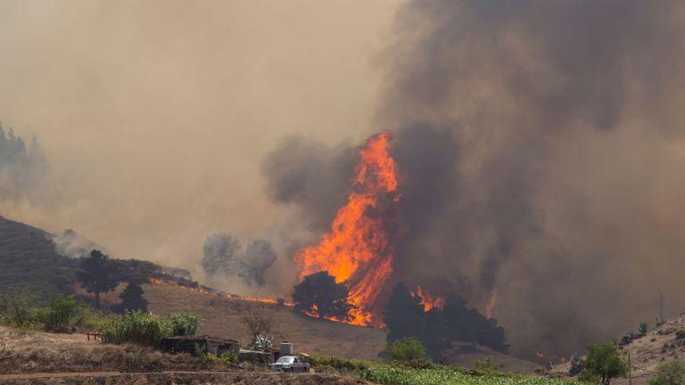 Gran Canaria a appelé le gouvernement central espagnol à envoyer de l'aide