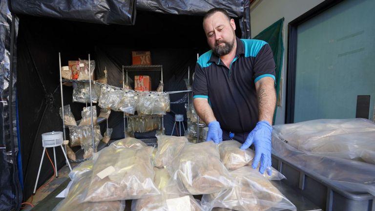 Quatre Britanniques ont été arrêtés en Australie et en Nouvelle-Zélande à la suite d'une opération de drogue visant un syndicat britannique du crime organisé. Pic: Qld Police