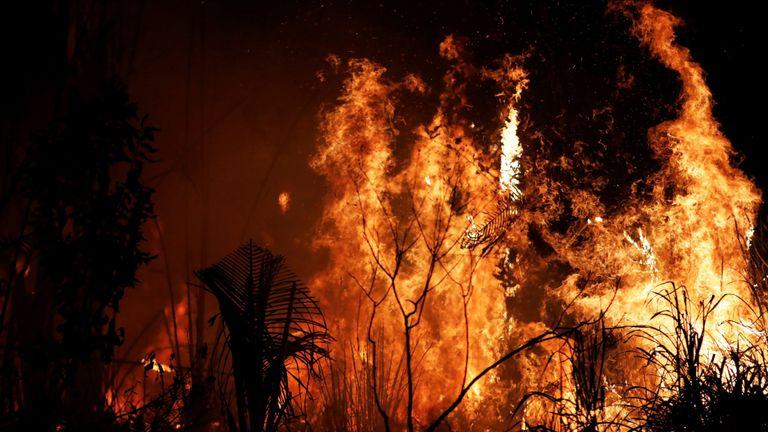 Les incendies d'Amazon