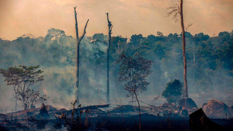 Des incendies de forêt naissent des feux de forêt à Altamira, dans l'État de Para, au Brésil, dans le bassin amazonien, le 27 août 2019. - Le Brésil acceptera une aide étrangère pour lutter contre les incendies dans la forêt amazonienne à condition que le pays d'Amérique latine contrôle l'argent Le porte-parole du président a déclaré mardi