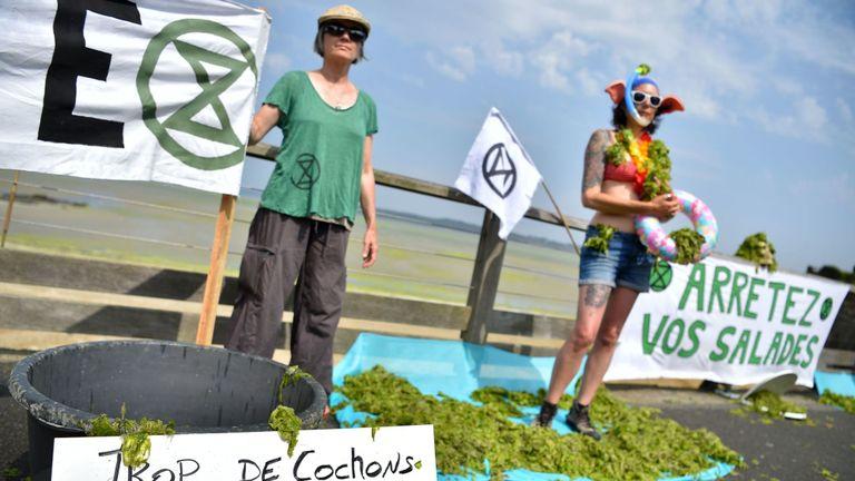 Des activistes protestent contre les algues toxiques sur la plage du Vallais