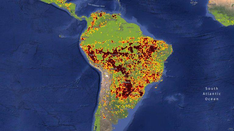 Pic: Surveillance mondiale des forêts