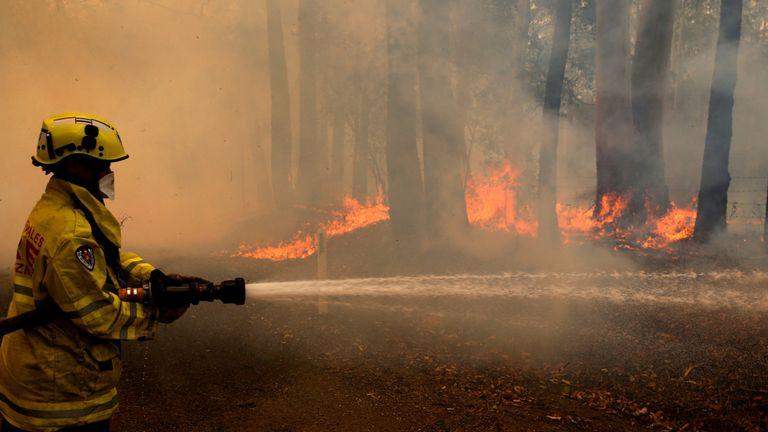 Un membre de l'équipe d'incendie de Gloucester lutte contre les feux d'un feu de brousse à Koorainghat, près de Taree, dans la région de la côte nord de NSW, Australie, le 12 novembre 2019