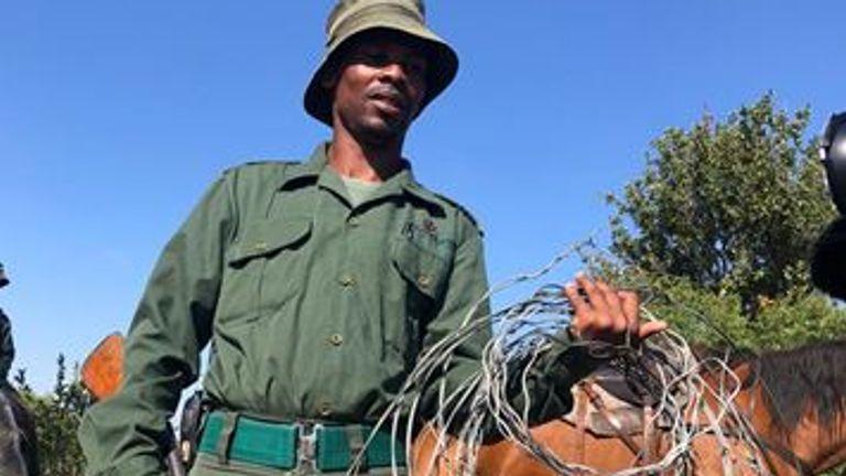 La réserve a perdu un certain nombre d'animaux pendant le verrouillage