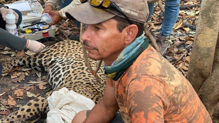 La région du Pantanal a été ravagée par un incendie