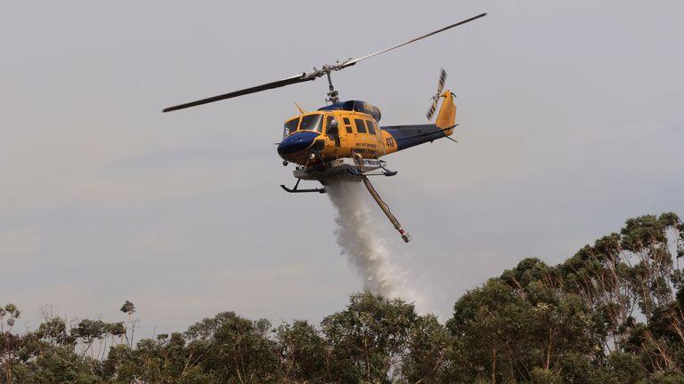 Des hélicoptères sont vus bombarder à l'eau un feu de brousse incontrôlable à Northmead à Sydney, Australie