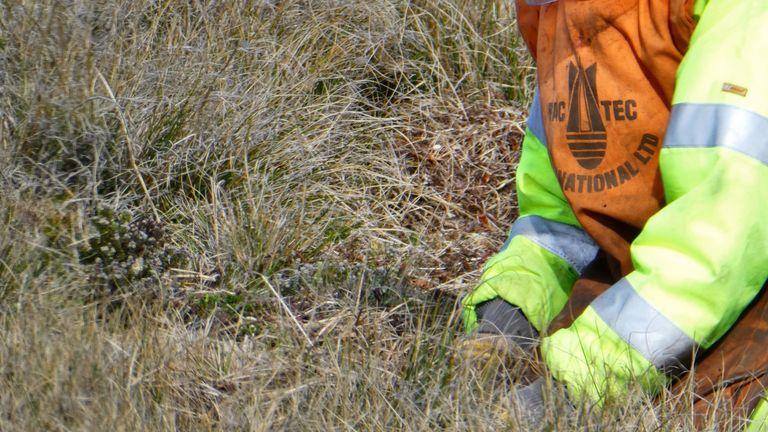 Un démineur travaille dans le Falklands Pic: John Hare et Guy Marot / FCDO