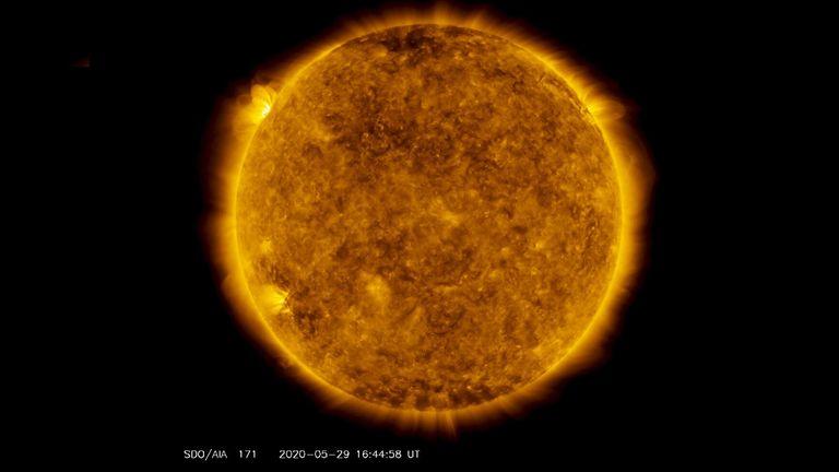 Sur le côté supérieur gauche de cette image du 29 mai 2020, de l'observatoire de la dynamique solaire de la NASA - montré ici dans la longueur d'onde de 171 angströms, qui est généralement colorisée en or - on peut voir une tache de lumière planer au-dessus de l'horizon gauche.  Cette lumière émane d'un matériau solaire traçant des lignes de champ magnétique qui planent au-dessus d'un ensemble de taches solaires sur le point de tourner sur le membre gauche du Soleil.  Crédit: NASA / Observatoire de la dynamique solaire / Joy Ng